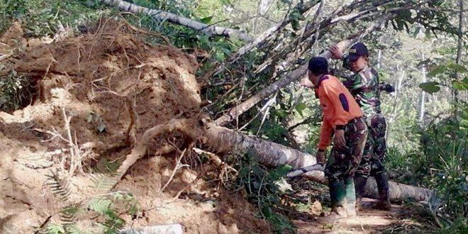 Delapan Titik di Jalan Raya Lingkar Kecamatan Pule Tertutup Lonsor
