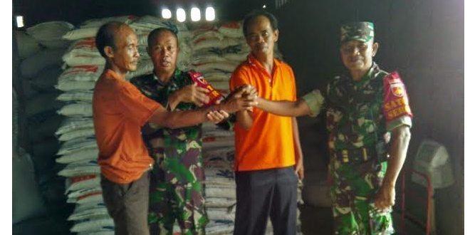 Operasi Sergap Koramil 04/Tempel Dan Bulog Kembali Serap Gabras 9,5 Ton Beras