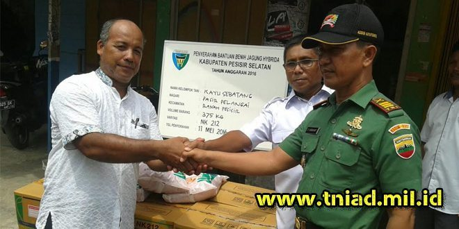 Koramil 02/Balai Selasa Distribusikan Bibit Jagung