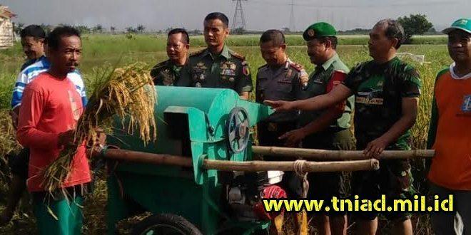 Kodim 0830/SU bersama Muspika Benowo dan Pakal Gelar Panen Raya Padi