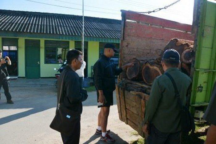 Tim Intel Korem 043/Gatam Lampung Tangkap Pelaku Illegal Loging.