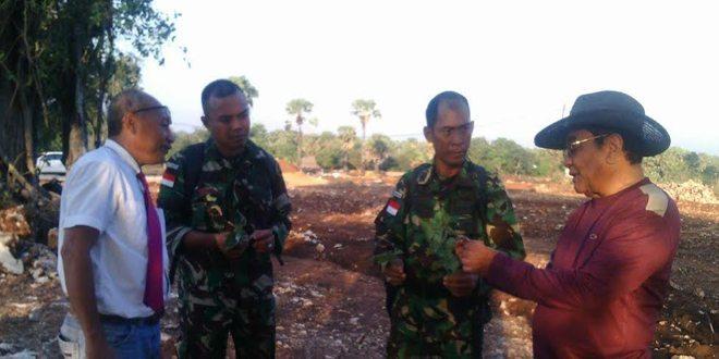 DPD RI Perwakilan NTT Gandeng Satgas Pamtas Galakan Penanaman Ubi