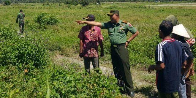 Korem 151/Bny Canakan 250 Hektar Tanam Jagung dan Padi di Kab.Buru