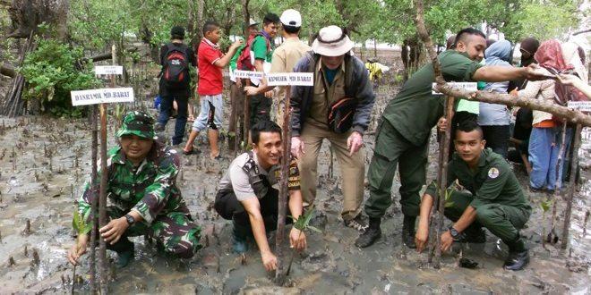Babinsa dari Koramil 413-11/Petaling Tanam Bakau di Pantai Suak Penagan
