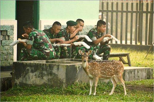 Indahnya Kebersamaan Prajurit Yonif Para Raider 502 Kostrad
