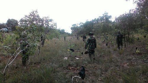 Koramil 1707-16/Sota Lakukan Perawatan Bibit Pohon Dalam Program Penghijauan Di Wilayah Hutan Pedalaman Kabupaten Merauke