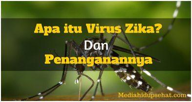 Indonesia Waspada Virus Zika