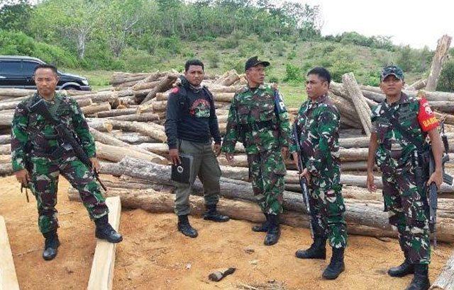 Meteran Kubik Kayu Jati Ditemukan Dalam Operasi Kegiatan Illegal Loging