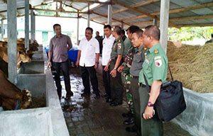 Program UPPO Untuk Penuhi Kebutuhan Pupuk Petani