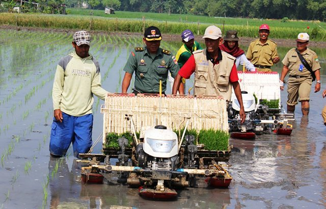 TNI Bersama Pemda dan Dinas Pertanian Blora Tingkatkan Ketahanan Pangan