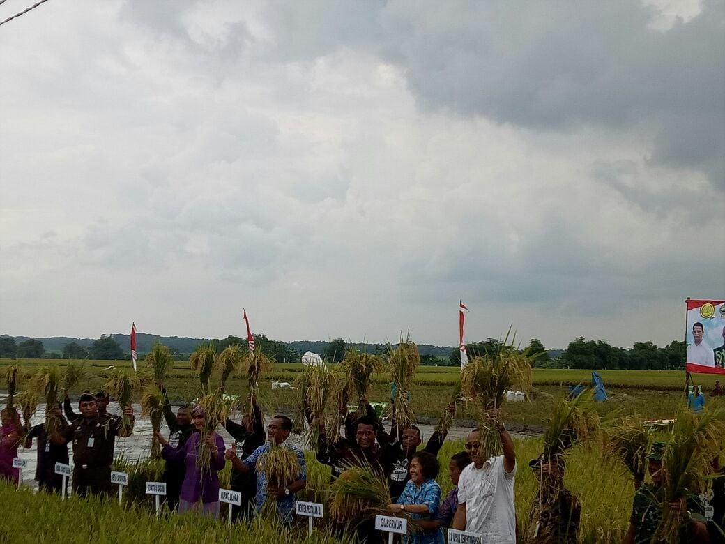 Menteri Pertanian Apresiasi Keberhasilan Panen Raya Padi di Kabupaten Blora