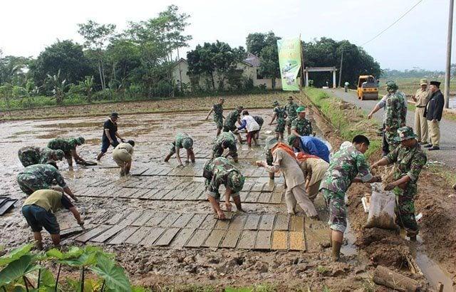 Dandim 0736/Batang : Kami Siap Membantu Petani