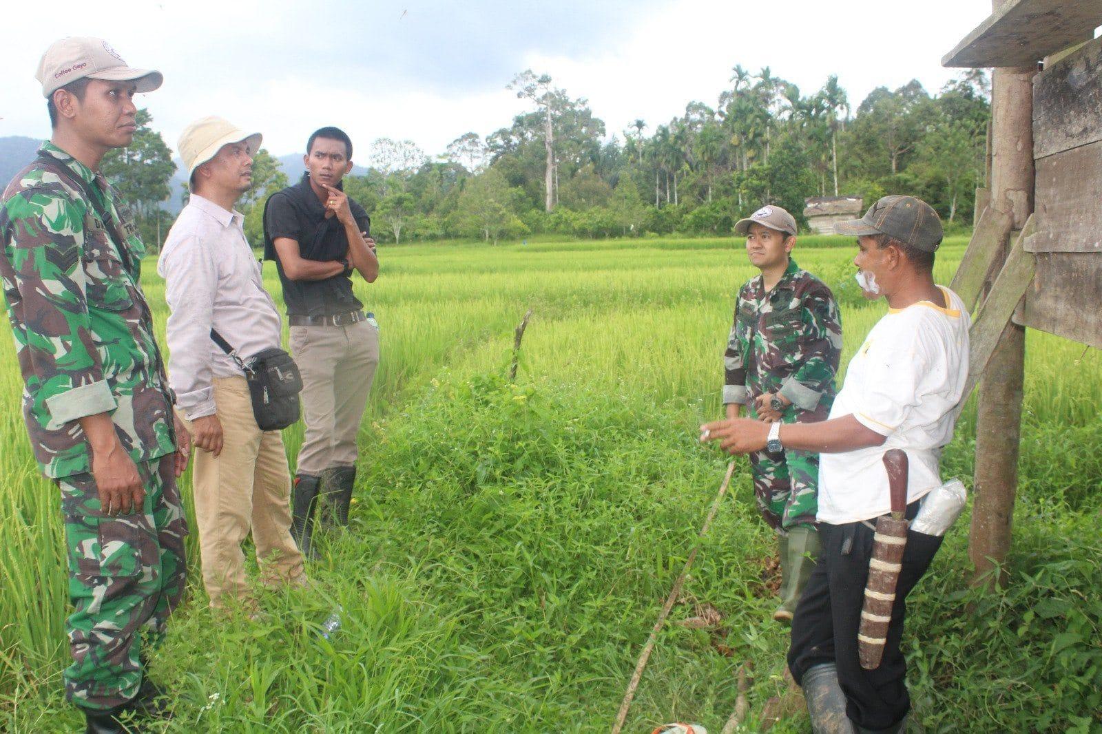 TNI-AD Bersama Dinas Pertanian Percepat Penyediaan Lahan Sawah Baru untuk Petani