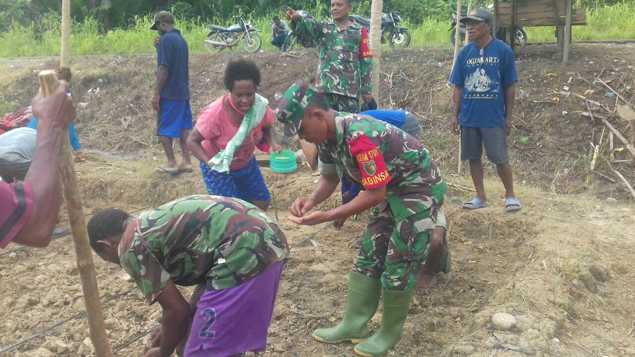 Prajurit TNI Bentuk Kelompok Tani Pertama di Distrik Unurum Guay Papua