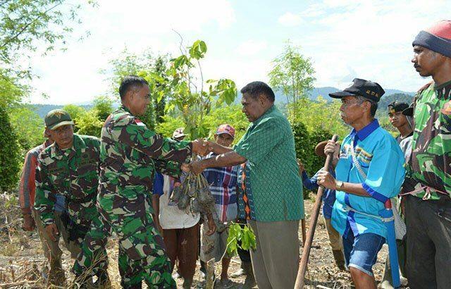TNI Tanam Ribuan Bibit Tanaman di Dua Distrik