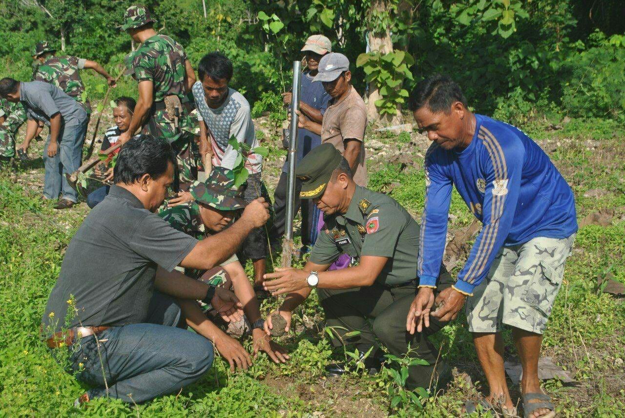 Penanaman Pohon Cegah Dampak Pemanasan Global