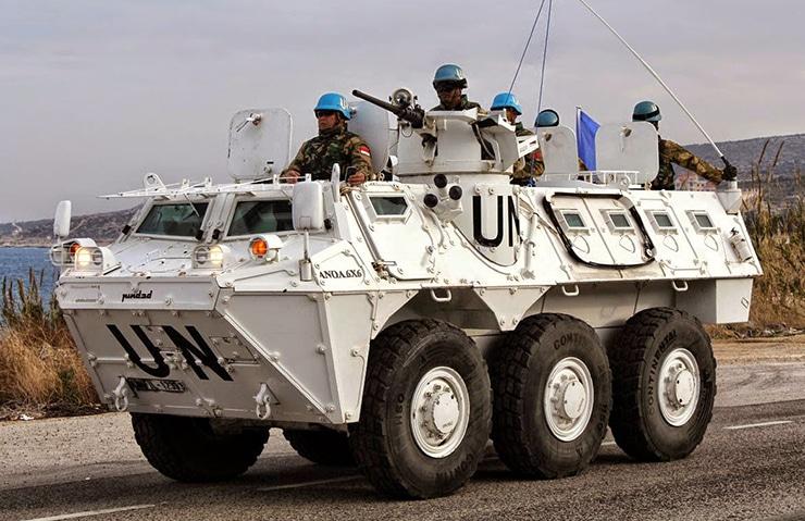 Anoa PBB Konga