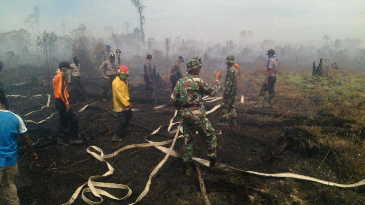 TNI Bantu Padamkan Api di Lahan Gambut