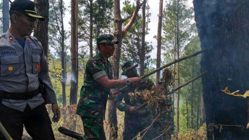 Kebakaran Hutan di Tangse, Dandim Pidie Turun Langsung Padamkan Api