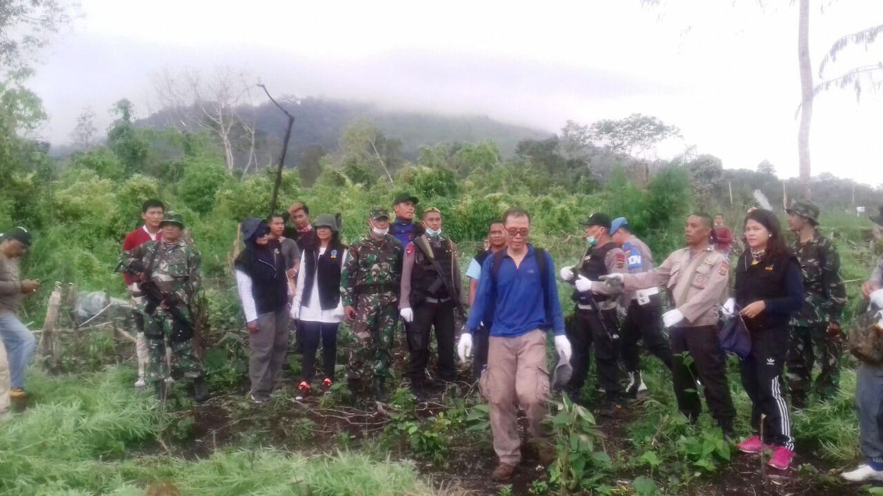 Tim Gabungan TNI/Polri Bersama BNNP, Musnahkan Lahan Ganja Seluas 2H di Puncak Gunung Seulawah