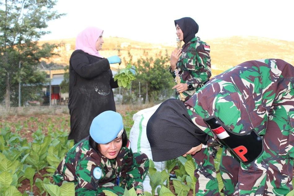Bukti Kedekatan TNI Dengan Warga Lebanon, Wanita TNI Indobatt XXIII-K/Unifil Gelar Panen Bersama