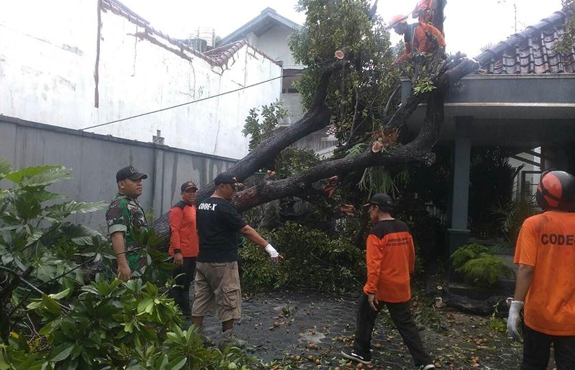 Prajurit Koramil Mergangsan Perbaik Rumah Warga Yang Tertimpa Pohon Tumbang