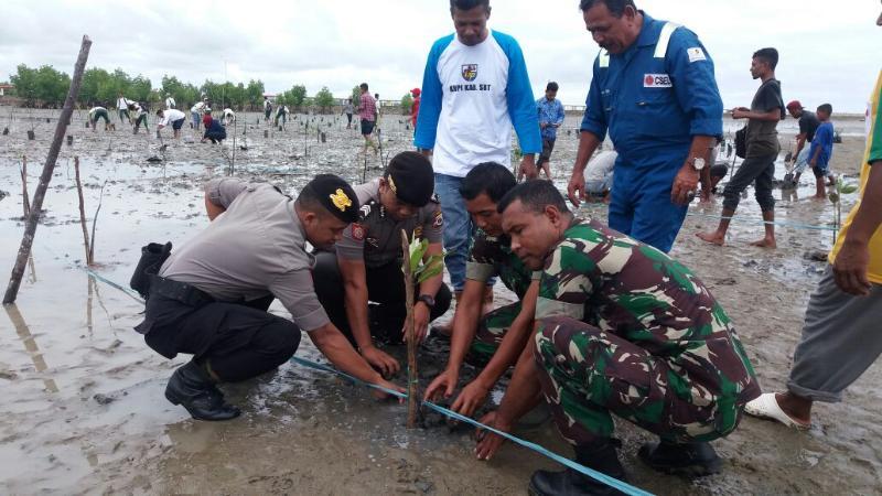 Peduli Lingkungan, Prajurit TNI Pelopori Penanaman Pohon Mangrove di Seram