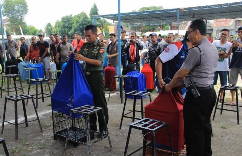 Seribu Kicau Mania Beradu Pada Kontes 'Dandim Yogya Cup'