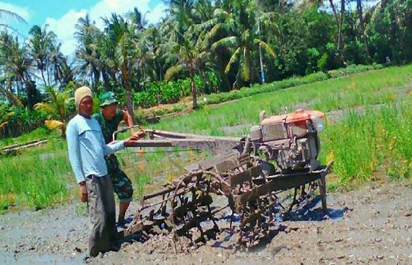 Babinsa Bantu Petani Bajak Sawah Dengan Traktor