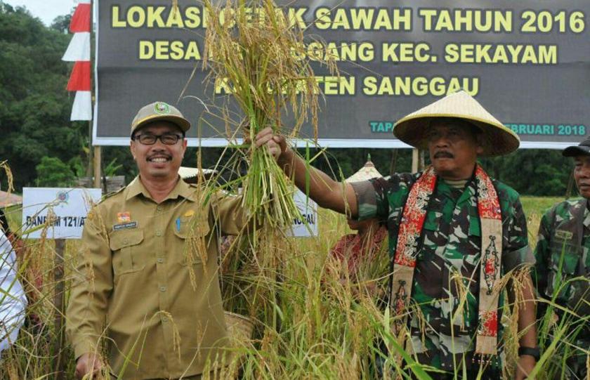 Pangdam Tanjungpura Panen Raya Bersama Warga Dusun Tapang Sebeluh