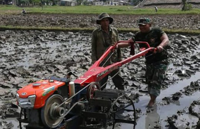 Upsus, Koramil 07/Kresek Tangerang Berhasil Tambah 396 Ha LTT
