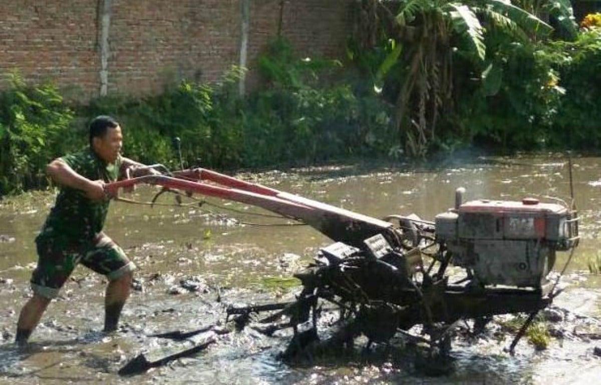 Babinsa Bantu Warga Bajak Sawah 1 Ha Gunakan Traktor