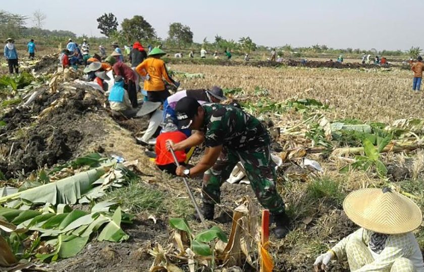 TNI Bantu Petani Lamongan Normalisasi Saluran Irigasi