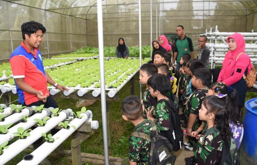 Kenali Alam dan Tanaman, TK Kartika V-11 Air Putih Kunjungi Outlet Agribisnis