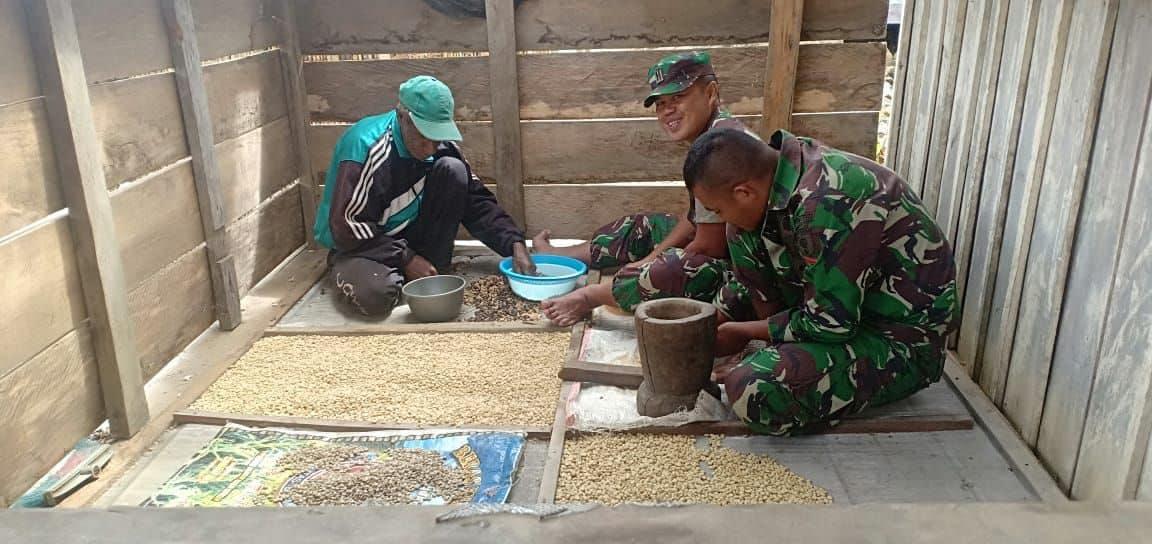 Tingkatkan Ekonomi Warga Pegunungan Bintang, Satgas Yonif 725 Latih Budidaya Kopi Abmi