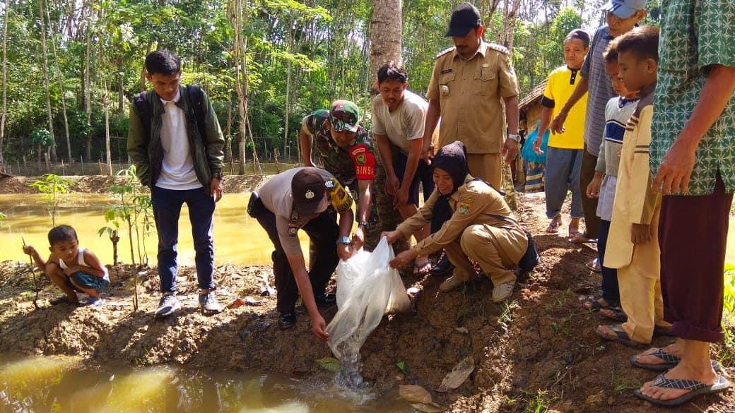Dukung Ketahanan Pangan, Babinsa Jayaloka Tebar 3000 Bibit Ikan Nila Dan Lele