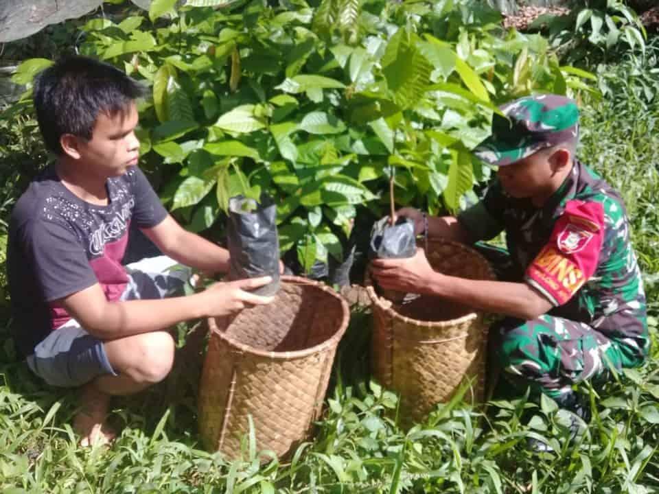 Kembangkan Pertanian Modern, Kodim Kubar Tingkatkan Pemberdayaan Kakao