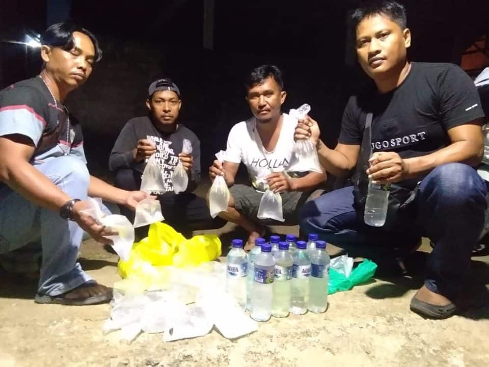 Kodim Ternate Gagalkan Penyelundupan 75 Botol Cap Tikus dari Halbar
