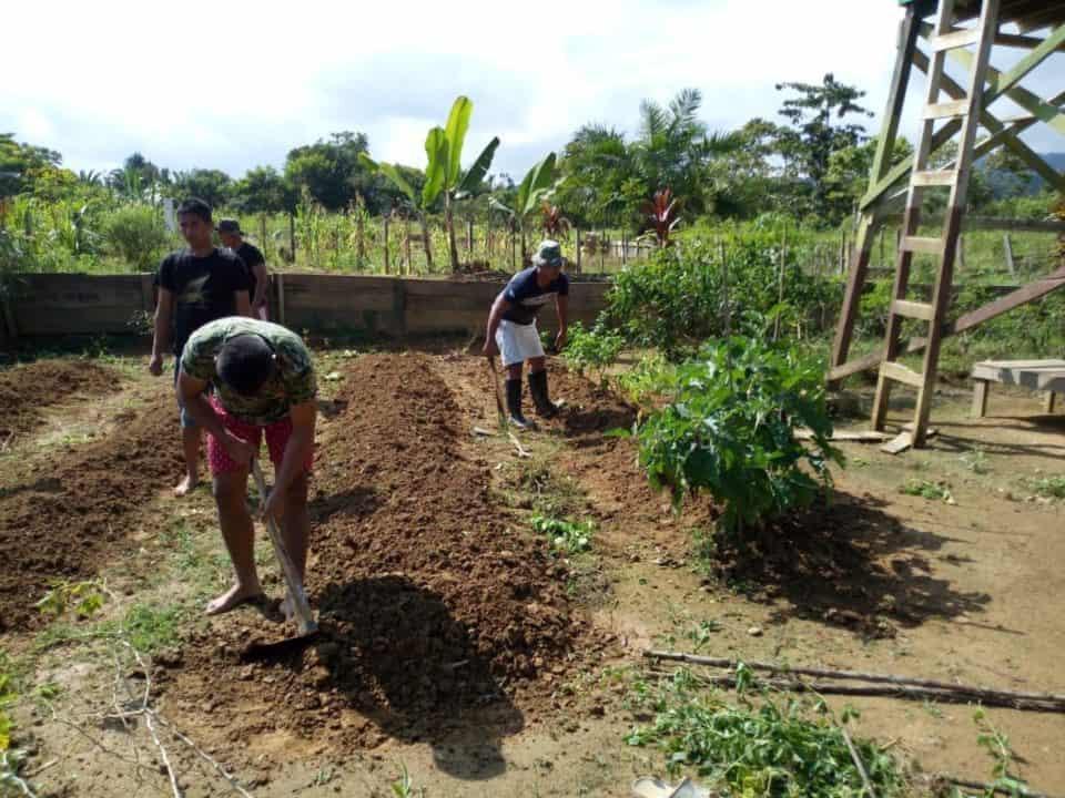 Buka Lahan Pertanian, Satgas Yonif R 509 Bantu Sejahterakan Warga Keerom