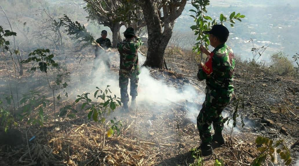 10 Ha Hutan Terbakar, Gerak Cepat Kodim Bima dan Yonif 742 Bantu Padamkan Api