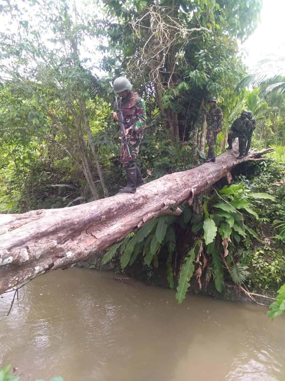 Cegah Penebangan Liar, Satgas Pamtas Yonif R 300 Patroli Hutan di Keerom