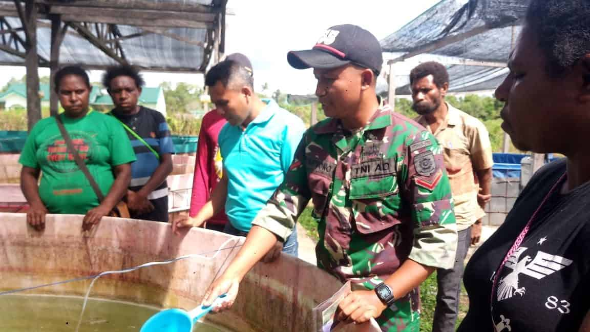 Bantu Perekonomian Warga, Yonif 755/Yalet Sosialisasi Budidaya Ikan Lele Bagi Warga Merauke