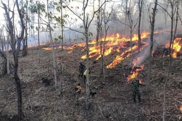 Satgas Pamtas Yonif 132 Padamkan Kebakaran Ladang