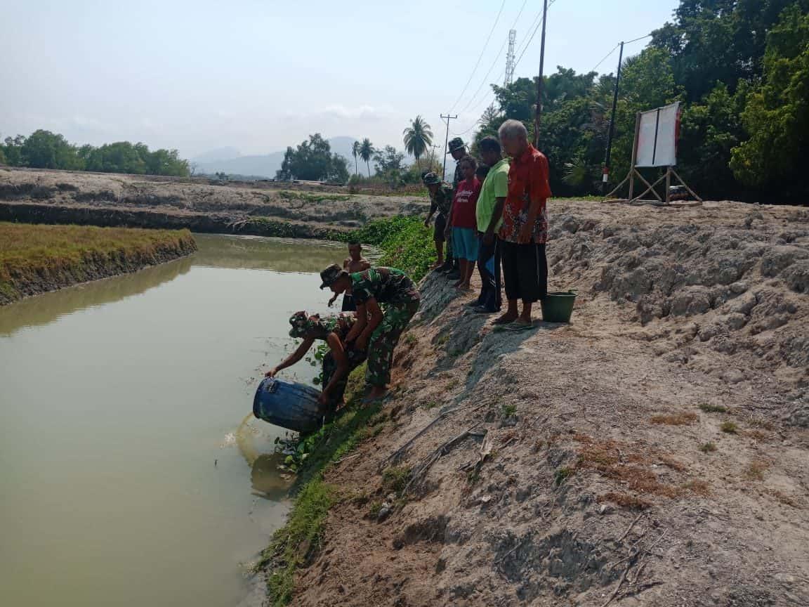 Tingkatkan Ekonomi Warga di Wiltas, Satgas Yonif R 142 Kembangkan Budidaya Ikan