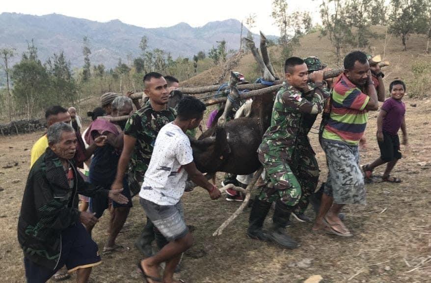 Tingkatkan Solidaritas, Personel Satgas Yonif 132 Bantu Evakuasi Ternak Warga yang Jatuh ke Jurang