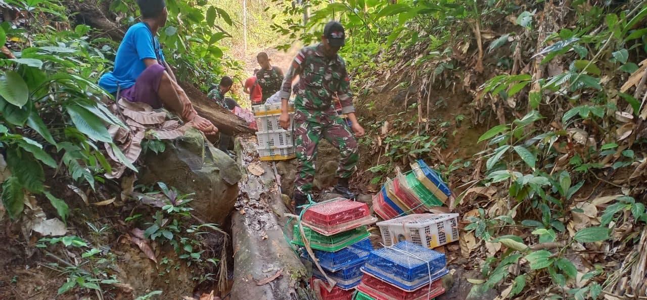 510 Ekor Burung Kacer Ilegal Diamankan Satgas Yonmek 643 di Entikong