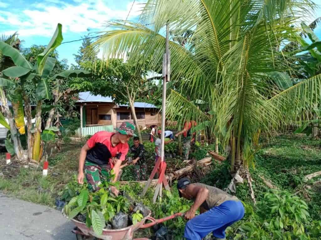 Tanam Coklat, Satgas Yonif 300 Dongkrak Ekonomi Warga Perbatasan RI-PNG