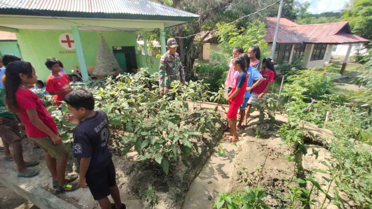 Kebun Edukasi, Satgas Yonif 132 Kembangkan Kecerdasan Majemuk Pelajar di Perbatasan RI-RDTL