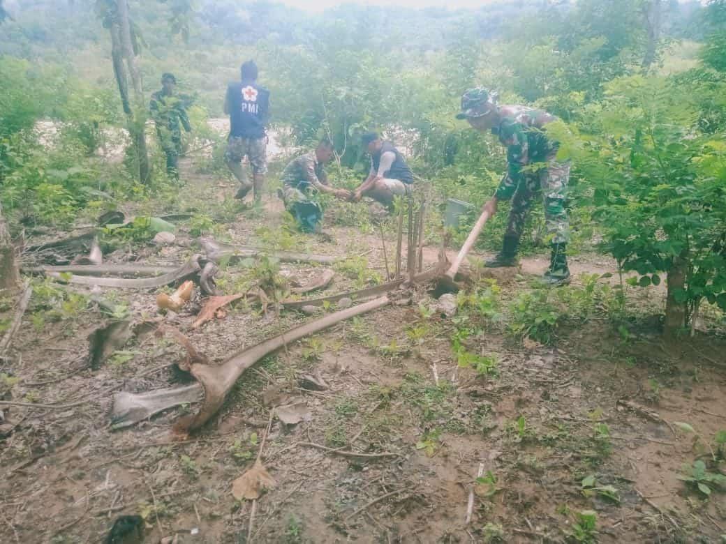 Cegah Longsor di Perbatasan RI-RDTL, Satgas Yonif R 142 Reboisasi Sungai Asulait