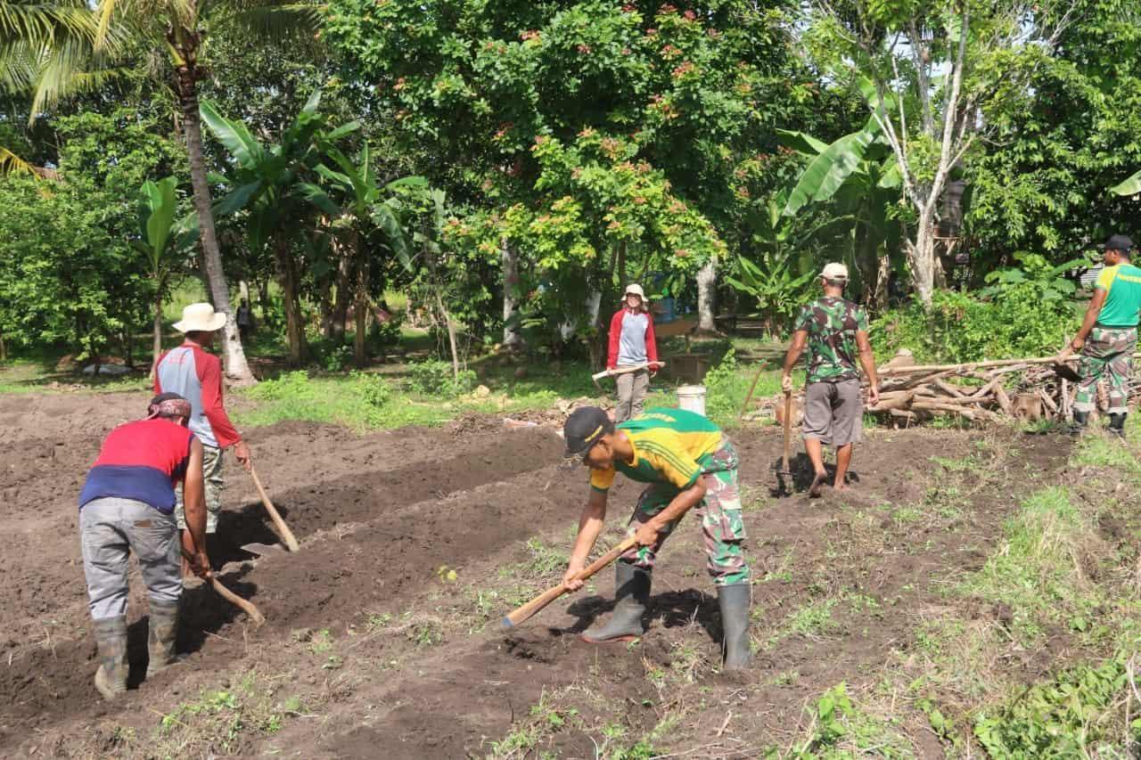 Tingkatkan Ekonomi Papua, Satgas Yonif MR 411 Bantu Warga Buka Lahan Kebun